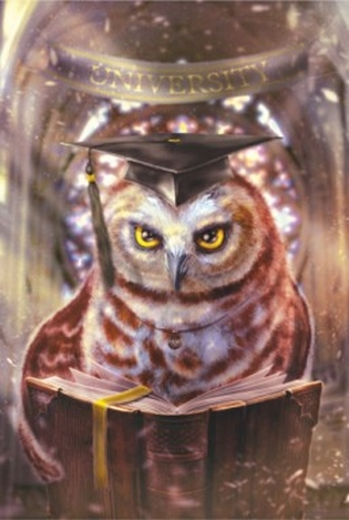 Owl. Totem animals