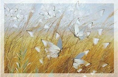 Бабочки над рожью
