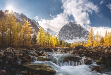 Golden mountains. Aktru, Altai. Russia