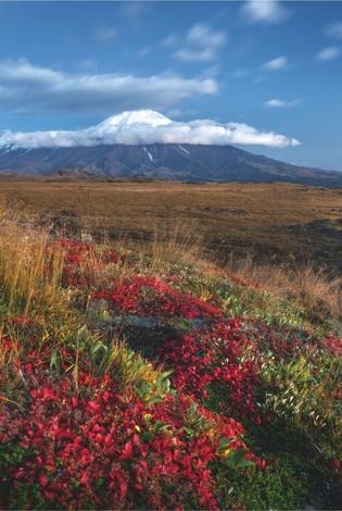 Volcano Tolbachik. Kamchatka, Russia